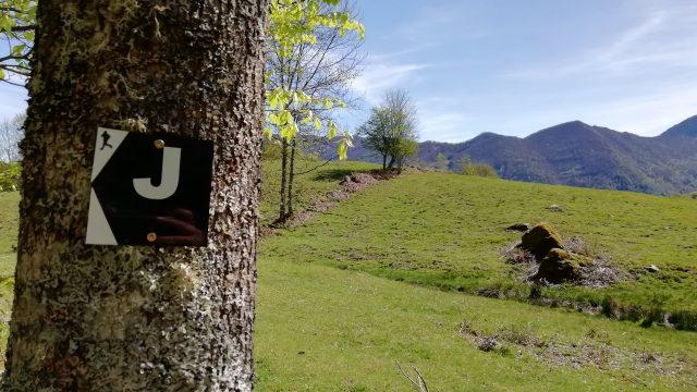 Les landes du Mont Béas 33,4 km (J)